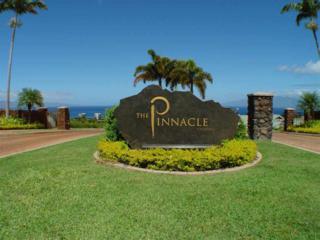 77 W Mahi Pua Pl  The Pinnacle Lo, Lahaina, HI 96761 (MLS #362921) :: Elite Pacific Properties LLC