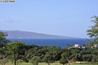 355  Kai Malu Pl  56-A, Kihei, HI 96753 (MLS #362926) :: Elite Pacific Properties LLC