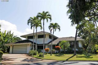 75  Hale Noa Pl  , Kihei, HI 96753 (MLS #362956) :: Elite Pacific Properties LLC