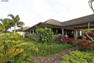 57  Oheala Pl  , Makawao, HI 96768 (MLS #363163) :: Elite Pacific Properties LLC