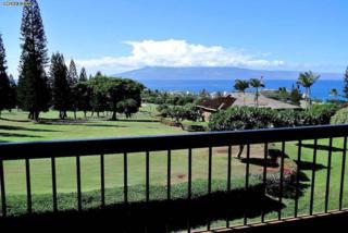 50  Puu Anoano St  1804, Lahaina, HI 96761 (MLS #363188) :: Elite Pacific Properties LLC