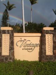 136  Kualapa Pl  136, Lahaina, HI 96761 (MLS #363214) :: Elite Pacific Properties LLC