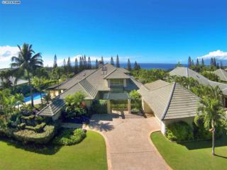 330  Cook Pine Dr  85, Lahaina, HI 96761 (MLS #363232) :: Elite Pacific Properties LLC