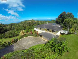 4325  Opana Pl  , Haiku, HI 96708 (MLS #363326) :: Elite Pacific Properties LLC