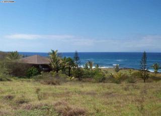 4426  Pohakuloa Rd  Lot 205, Maunaloa, HI 96770 (MLS #363439) :: Elite Pacific Properties LLC
