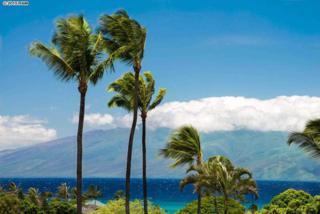 120  Hui Rd F  A-13, Lahaina, HI 96761 (MLS #363488) :: Elite Pacific Properties LLC