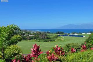212  Plantation Club Dr  21, Lahaina, HI 96761 (MLS #363495) :: Elite Pacific Properties LLC