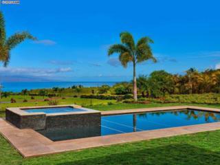 39  Pua Niu Way  Apt B, Lahaina, HI 96761 (MLS #363552) :: Elite Pacific Properties LLC