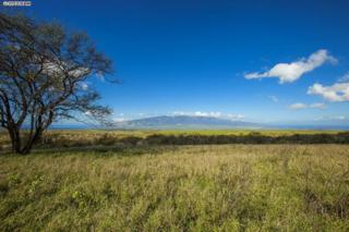 35  Opalipali Pl  , Kula, HI 96790 (MLS #363623) :: Elite Pacific Properties LLC