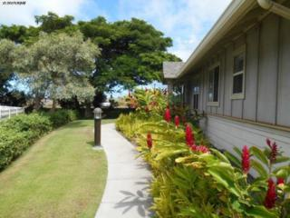 655  Meakanu Ln  601, Wailuku, HI 96793 (MLS #363640) :: Elite Pacific Properties LLC