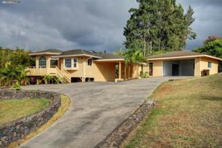 3535  Lower Kula Rd  , Kula, HI 96790 (MLS #363666) :: Elite Pacific Properties LLC