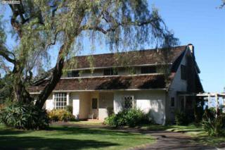520  Polipoli Rd  , Kula, HI 96768 (MLS #363672) :: Elite Pacific Properties LLC