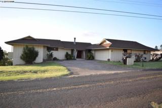 316  Elilani St  , Makawao, HI 96768 (MLS #363683) :: Elite Pacific Properties LLC