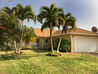 133  Makalauna St  , Kihei, HI 96753 (MLS #363795) :: Elite Pacific Properties LLC