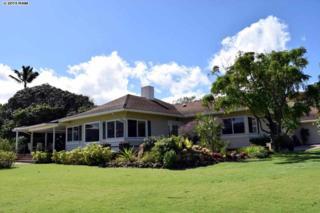 1711  Kamamalu  , Wailuku, HI 96793 (MLS #363915) :: Elite Pacific Properties LLC