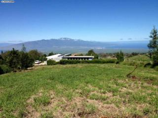 0  Lower Kimo  Lot 26-D, Kula, HI 96790 (MLS #363930) :: Elite Pacific Properties LLC