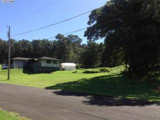 36  Upu  , Kula, HI 96790 (MLS #364015) :: Elite Pacific Properties LLC