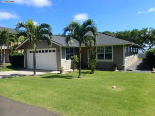39  Kapalaia Pl  Lot 9, Wailuku, HI 96793 (MLS #364095) :: Elite Pacific Properties LLC