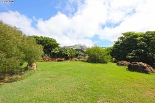 199  Paia Pohaku  , Lahaina, HI 96761 (MLS #364101) :: Elite Pacific Properties LLC