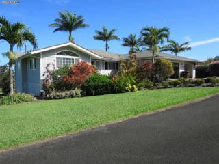 2160  Kauhikoa  , Haiku, HI 96708 (MLS #364127) :: Elite Pacific Properties LLC