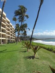 145 N Kihei  524, Kihei, HI 96753 (MLS #364141) :: Elite Pacific Properties LLC