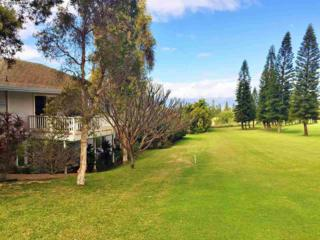 2811  Liholani #16  , Makawao, HI 96768 (MLS #364143) :: Elite Pacific Properties LLC