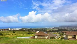 15  Awela  102, Wailuku, HI 96793 (MLS #364149) :: Elite Pacific Properties LLC