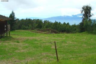 15800  Haleakala Hwy  , Kula, HI 96790 (MLS #364165) :: Elite Pacific Properties LLC