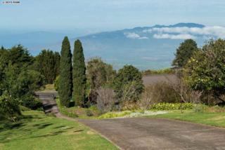 17671  Haleakala  , Kula, HI 96790 (MLS #364176) :: Elite Pacific Properties LLC