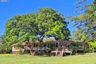 69  Aulii Dr  , Makawao, HI 96790 (MLS #364307) :: Elite Pacific Properties LLC