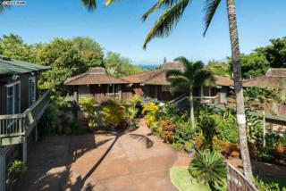 3228  Lanina Pl  , Kihei, HI 96753 (MLS #364351) :: Elite Pacific Properties LLC