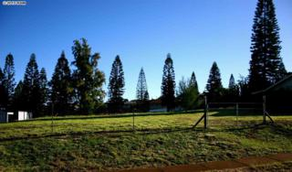 2721  Keikilani  , Makawao, HI 96768 (MLS #364443) :: Elite Pacific Properties LLC