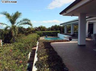 3914  Wailea Ekolu Pl  , Kihei, HI 96753 (MLS #364535) :: Elite Pacific Properties LLC