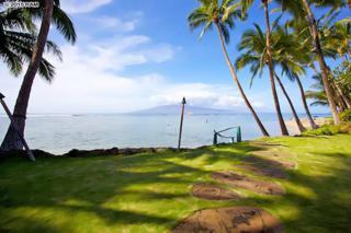 19  Kamaka  8, Lahaina, HI 96761 (MLS #364607) :: Elite Pacific Properties LLC