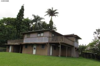 77  Keanini  , Hana, HI 96713 (MLS #364610) :: Elite Pacific Properties LLC
