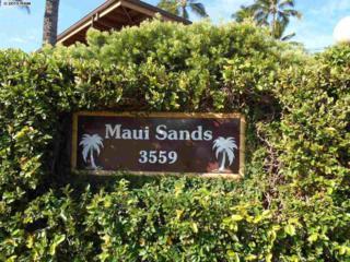 3559  Lower Honoapiilani Rd  2H, Lahaina, HI 96761 (MLS #364824) :: Elite Pacific Properties LLC