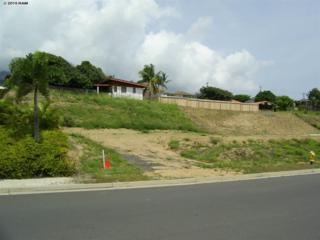 132  Keoneloa  , Wailuku, HI 96793 (MLS #364890) :: Elite Pacific Properties LLC