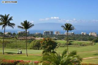98 W Mahi Pua  , Lahaina, HI 96761 (MLS #364974) :: Elite Pacific Properties LLC