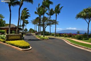 604  Anapuni  Lot #53 Ph 2, Lahaina, HI 96761 (MLS #364985) :: Elite Pacific Properties LLC