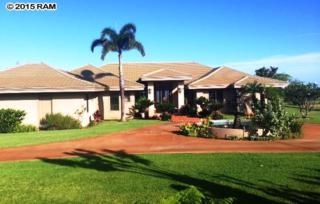 50  Opalipali  , Kula, HI 96790 (MLS #365088) :: Elite Pacific Properties LLC
