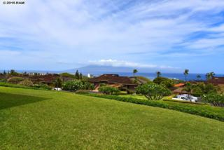 50  Puu Anoano  3801, Lahaina, HI 96761 (MLS #365093) :: Elite Pacific Properties LLC