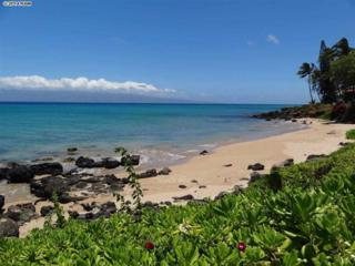 3959  Lower Honoapiilani Rd  404, Lahaina, HI 96761 (MLS #353336) :: Elite Pacific Properties LLC