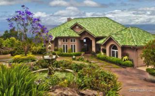 1563  Kekaulike Ave  , Kula, HI 96790 (MLS #357761) :: Elite Pacific Properties LLC
