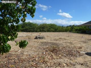 21  Kamakoa Pl  63, Wailuku, HI 96793 (MLS #358127) :: Elite Pacific Properties LLC