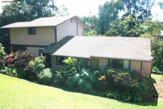 3582  Piikea Pl  , Makawao, HI 96768 (MLS #358208) :: Elite Pacific Properties LLC