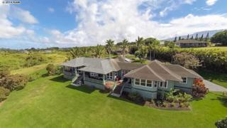 160  Laenani St  , Haiku, HI 96708 (MLS #358271) :: Elite Pacific Properties LLC