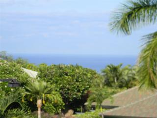 385  Kualono Pl  591, Wailea/Makena, HI 96753 (MLS #358797) :: Elite Pacific Properties LLC