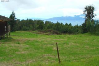 15800  Haleakala Hwy  , Kula, HI 96790 (MLS #359348) :: Elite Pacific Properties LLC