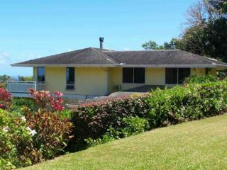 4325  Opana Pl  , Haiku, HI 96708 (MLS #361180) :: Elite Pacific Properties LLC