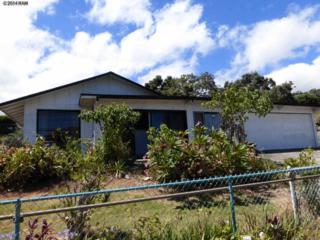970  Makawao Ave  , Makawao, HI 96768 (MLS #361216) :: Elite Pacific Properties LLC